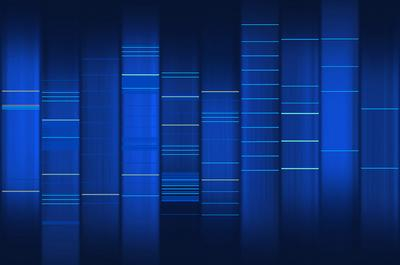 PCR.jpg